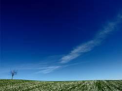 Einsame Weite in blau / grün