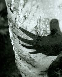 handschatten