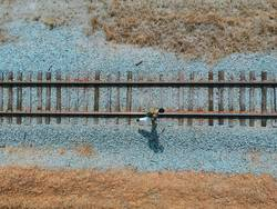 An aerial view of a hiker walking along the railroad