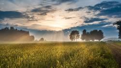 Nach dem Gewitter - Sonnenuntergangsstimmung auf dem Land