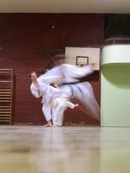 karatekata