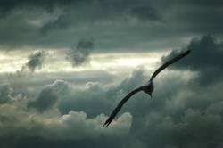 Der Himmelsstürmer