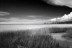 Der schönste Strand der USA 2005