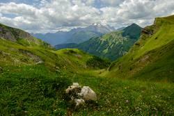 Dolomiten Höhenwiese