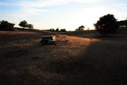 Sonnenuntergang auf der Westruper Heide