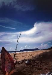 beach porto santo