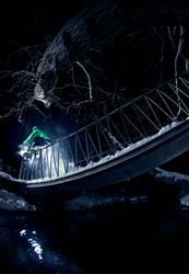 Waterrail