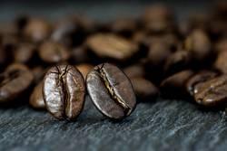 Zwei Kaffeebohnen