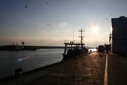 .:: SONNENuntergang im Hafen ::.