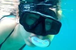 Auf der Suche nach Nemo