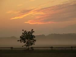 Morgendämmerung