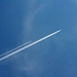 Wettflug