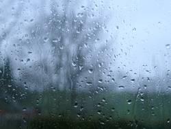 It's raining ...