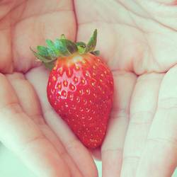 one fresh strawberry in hands