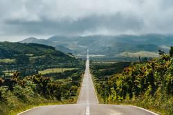Endlos lange Strasse ins Gebirge von Pico, Azoren