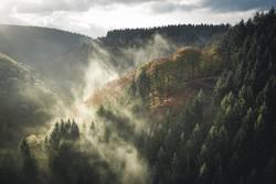 Herbstlandschaft mit Nebel bei Sonnenaufgang