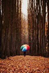 Allee mit Herbstlaub und Frau mit buntem Regenschirm