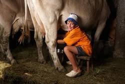 Frischmilchproduktion