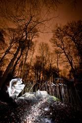 Lightscribe Art III - Illuminated Forest