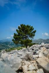 Dubrovnik Xl