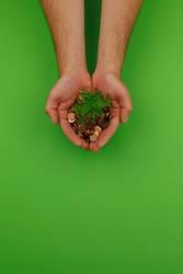 #AS# ökologisch investieren
