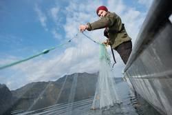 Junger Fischer im Fischerboot am See holt sein Fischernetz ein