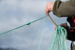 Fischer holt Fischernetz mit Fischfang ein