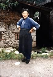 Chinesin