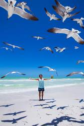 Traveler on the beach surrounded by seagulls