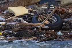 Müll und Treibgut im Rhein bei Köln (Hochwasser)