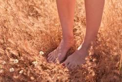 sweet feet & legs
