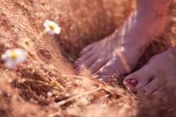 sweet feet