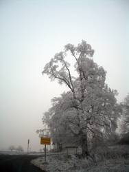 Winter in Marburg