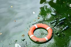 Eine Rettung vor dem (Plastik-)Müll?