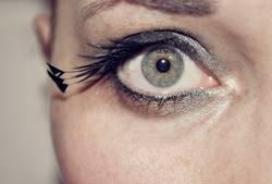 Pfauen-Auge