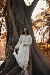 Brazilian woman barefoot wearing a white dress on big tree roots