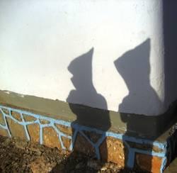 Schattenmänner