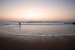 sunset surfer II