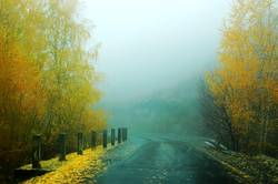 Landscape of a highway road in the foggy autumn morning