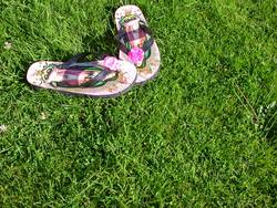 Flip Flops auf dem Rasen