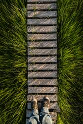 Gras | Steg | Gras