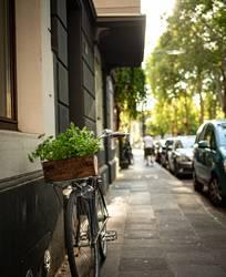 Fahrrad mit Vintage Kräuter-Holzkiste