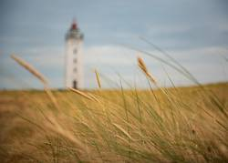 Leuchtturm auf Lolland