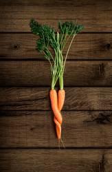 Karotten Liebe