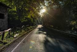 Sonnenlicht | on the road again