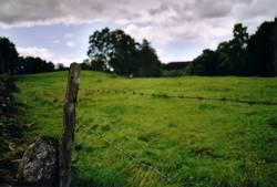 staket och landskap
