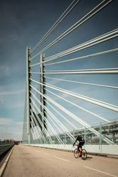 The bridge and the cyclist