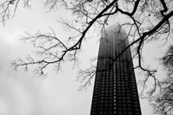 Into foggy skies