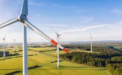 Windpark im Sommer