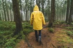 Mann mit gelber Regenjacke geht im Wald